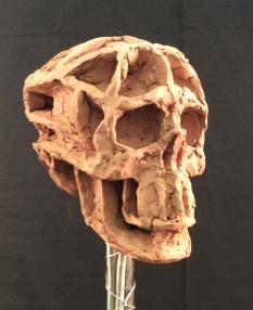 miller,m-skull-9
